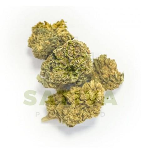 CBD Kwiaty Konopi - Bubble Gum 1g